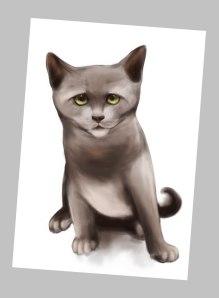 cat2re3